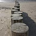 Quelques jours en baie de somme, la plage de sable au crotoy et celle de galets à cayeux sur mer, avec cornemuse !