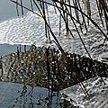 Lac du bourget glacé (3)