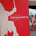 Musée des confluences : yokainoshima, esprits du japon : une plongée passionnante dans la spiritualité japonaise !