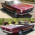 FORD - Mustang Cabriolet - 1965