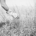 les mains dans le sable