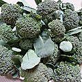 brocolis - www.passionpotager.canalblog.com