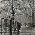 N°604 - promenade sous la neige