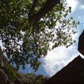hermitage des gorges de Galamus