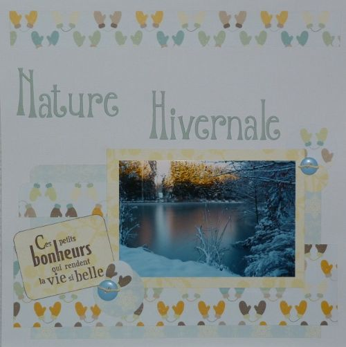 Nature hivernale