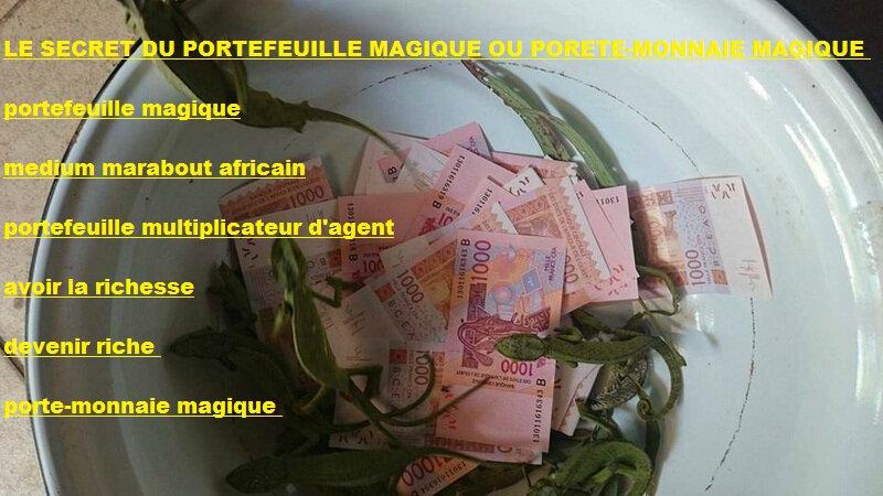 secret du portefeuille magique,portefeuille magique,porte-monnaie magique,bedou magique,billet magique,devenir riche,devenir riche en deux jours