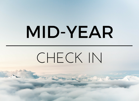 mid-year-check-in-2017-2