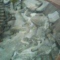 Le haut de l'amphi avec une portion de la