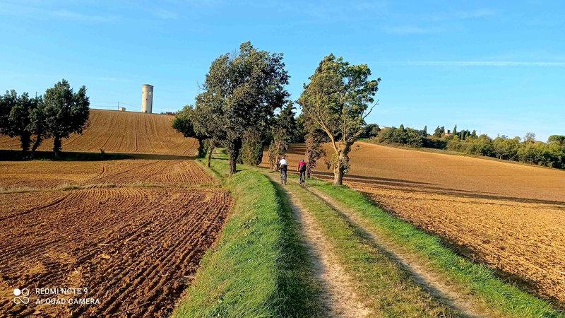 Gravel Avignonet-Lauragais 17-10-2021 (10)