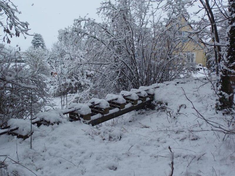 0203 Snow CFV 23 Janvier 2019