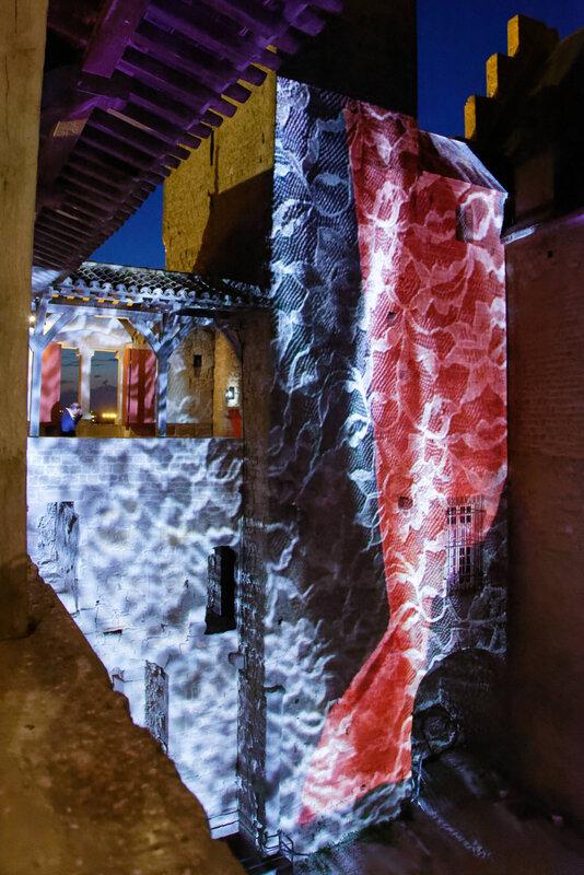 La cité des pierres vivantes - Carcassonne