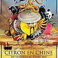 2015-82 éme fête du citron à Menton 20 février 2015.