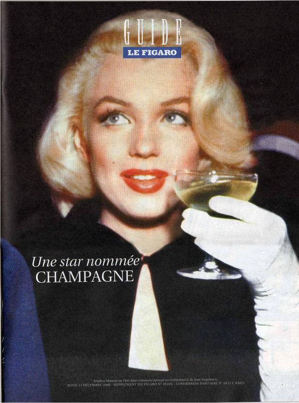 Le Figaro Guide 2008