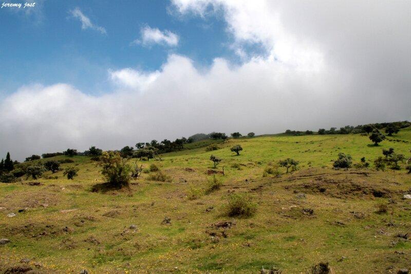 colline plaine des cafres