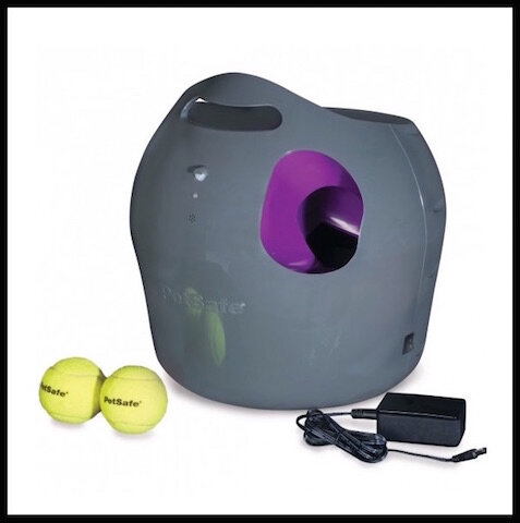 petsafe lanceur balle automatique chien 2