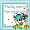 Une pluie d'étoiles sur mon blog