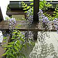 IMG_1848a