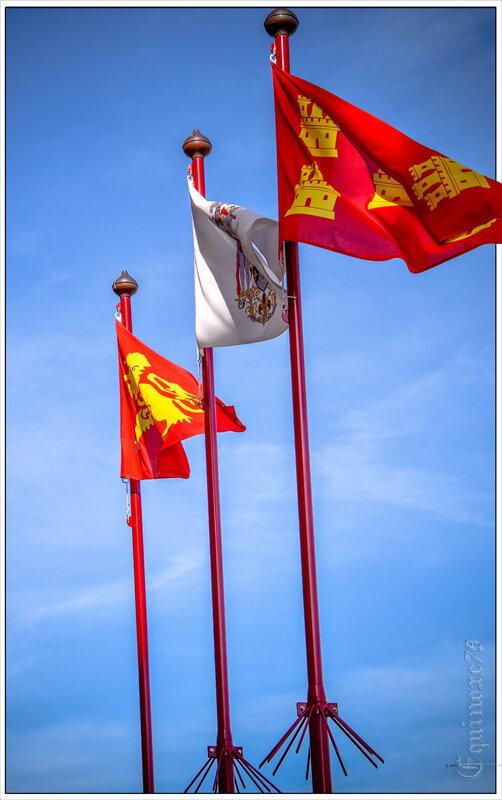 Le drapeau de Poitou-Charentes Donjon Niort