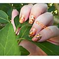 Fleurs oranges en one-stroke