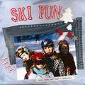 ski fun-Panorama