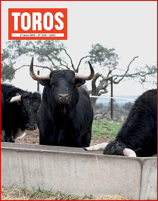 COUV TOROS 2116-page-001