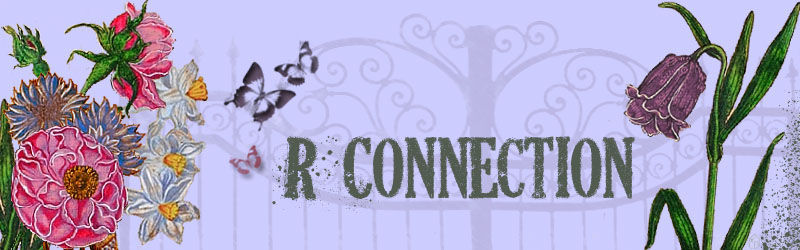 R connection