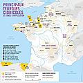 Cidrexpo 2021: la normandie première région d'europe pour les terroirs cidricoles labelisés