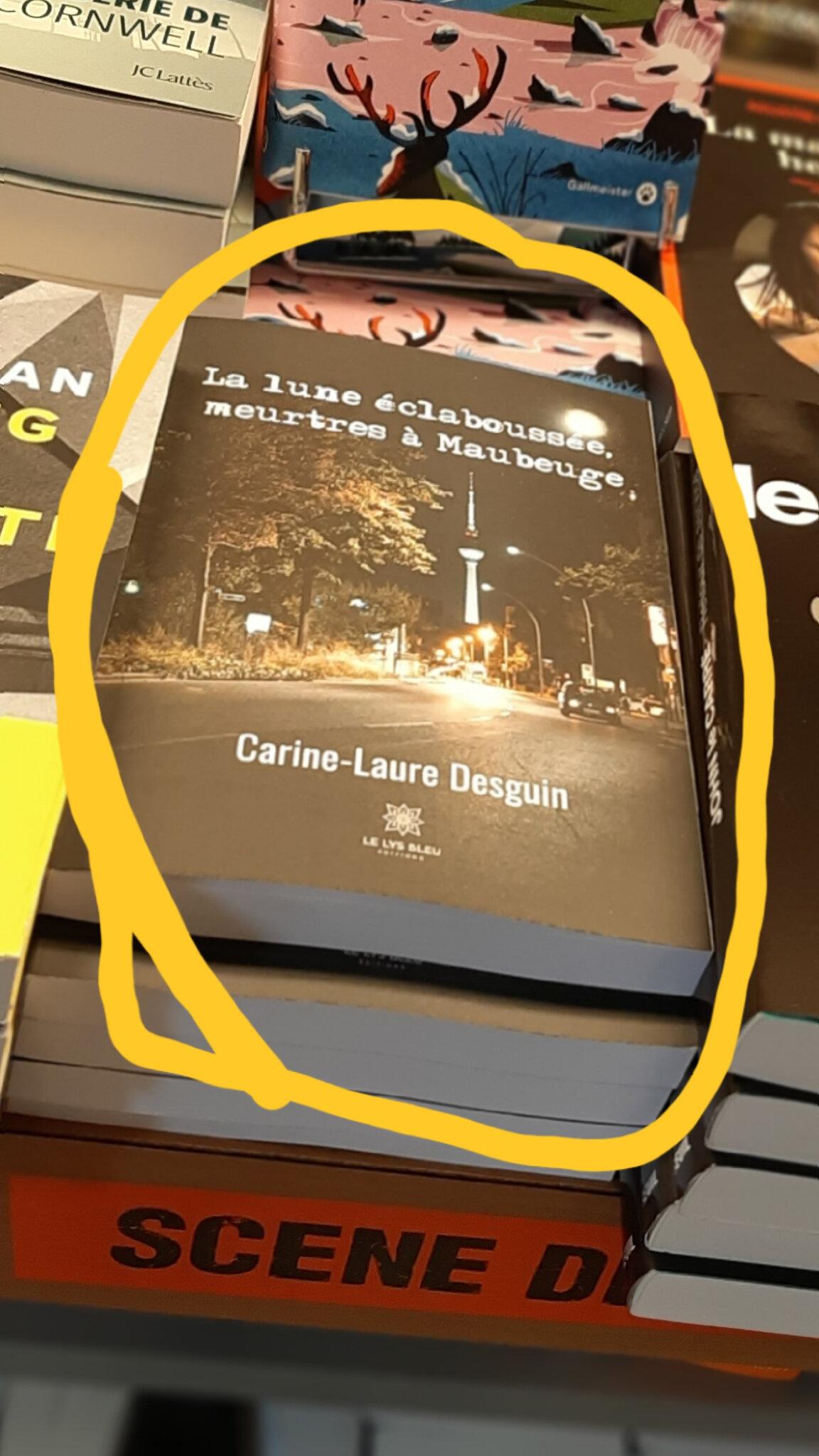 La LUNE ECLABOUSSEE, MEURTRES A MAUBEUGE, recension de D. Billamboz sur Interligne de Armelle Barguillet