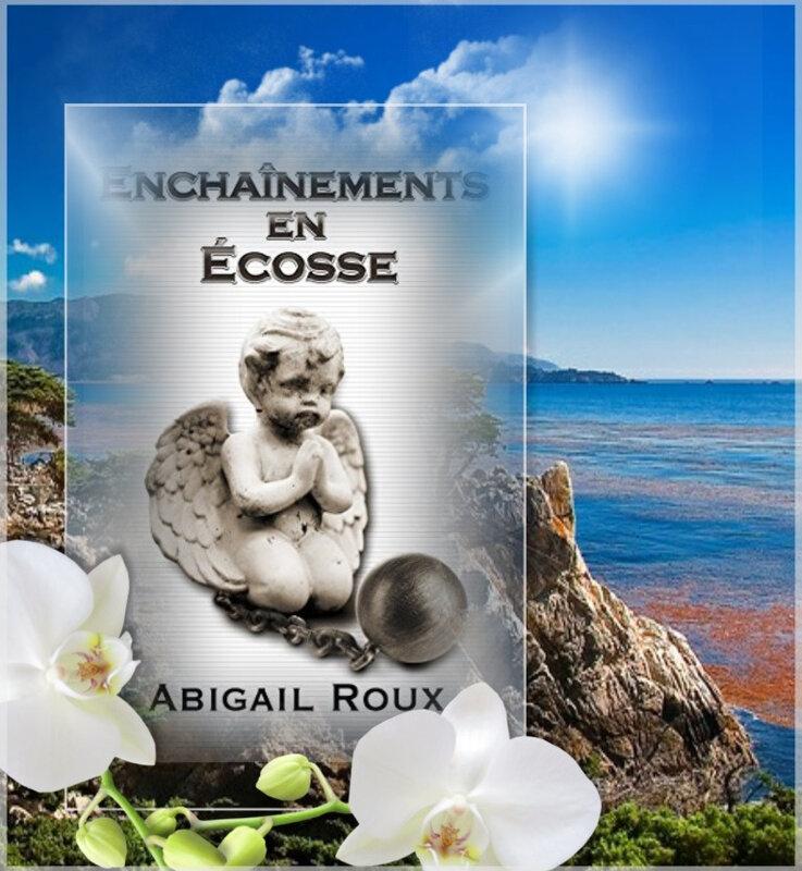 Ty et Zane tome 8 : enchaînements en Ecosse (Abigail Roux)