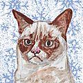 Calendrier de l'avent : jour 6 (carte grumpy cat de noël)