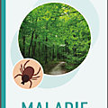 Informations sur la maladie de lyme (document inpes)