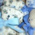 Ours bleus