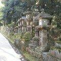 Lanternes en pierre sur la route qui mène au Grand Sanctuaire Ka
