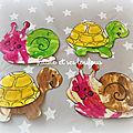 Petit escargot et jolie tortue