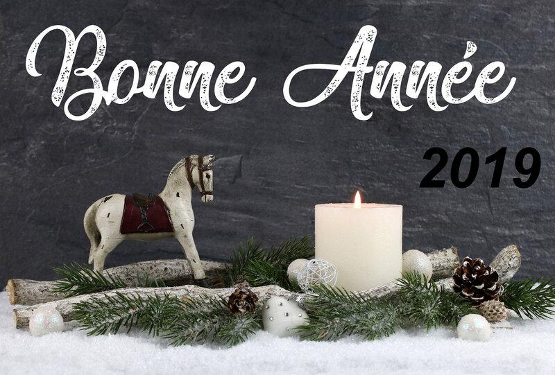 equicentre-bonne-annee-2019-s
