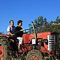 Photos JMP©Koufra12 - Cornus Rando Tracteurs - 15082018 - 132