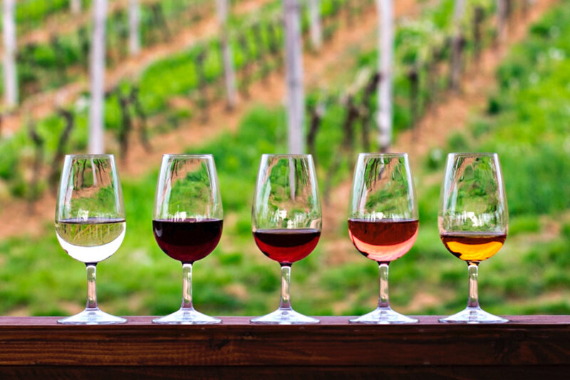 brasileiros-vinhos